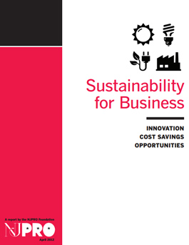 Sustainability for Business
